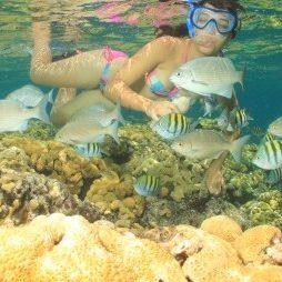 lo snorkeling varadero